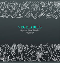 Template borders with hand drawn vegetables vector