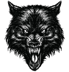 Hand Drawn Wolf Linework vector image vector image