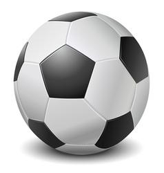 Detailed black fringe football ball vector image vector image