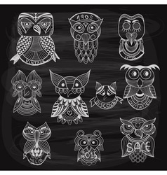 10 chalk drawn owls vector image