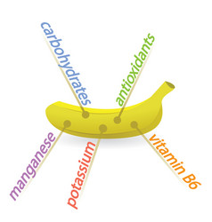 Banana content properties and benefits vector