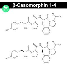 Beta casomorphin 1-4 chemical molecule vector
