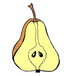 Cutting pear vector