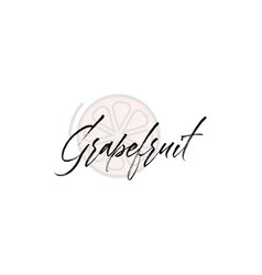 grapefruit word on background fruit vector image