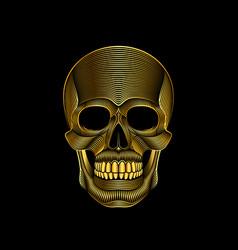 graphic print of stylized golden skull on black vector image