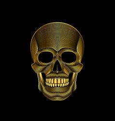 graphic print stylized golden skull on black vector image