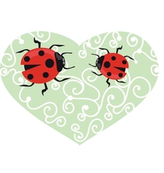 Ladybird on the green grass vector image