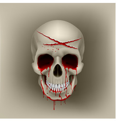bloody skull vector image vector image