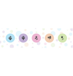 5 bouquet icons vector