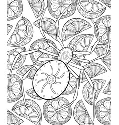 Adult coloring bookpage a spider on the vector