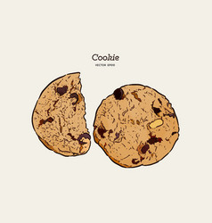 chocolate chip cookie hand draw sketch vector image