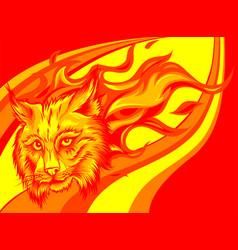 Eurasian lynx cat head with flames vector