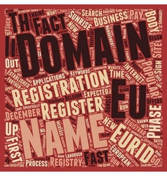 Eurid text background wordcloud concept vector image