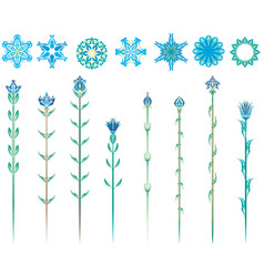 stylized flowers collection vector image