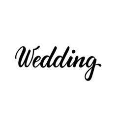 wedding hand drawn creative calligraphy brush vector image