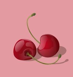 Ripe red cherry berries vector image