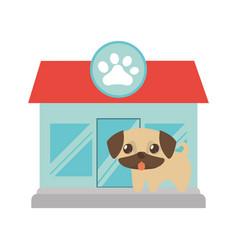 puppy little tongue out pet shop paw print vector image vector image