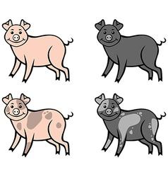 Color pig vector
