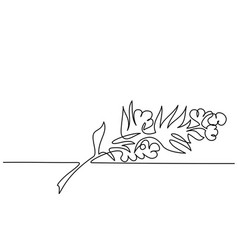 Cosmetic aromatherapy plant and flowers line art vector