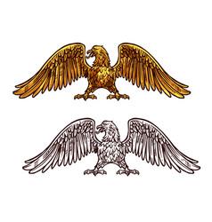 Eagle or hawk golden icon sketch vector