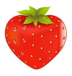 fresh strawberry vector image