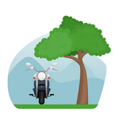 Motorcycle in a clearing near a sprawling tree vector