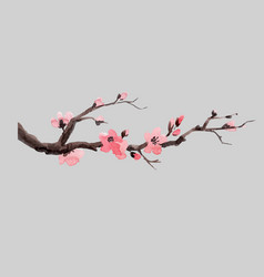 Watercolor sakura branch vector