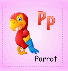 animals alphabet p is for parrot vector image