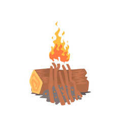bonfire campfire logs burning cartoon vector image