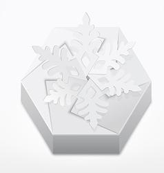 Christmas gift box with snowflake vector image