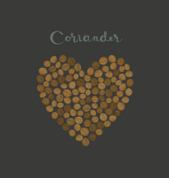 Coriander seeds spice in a heart shape vector
