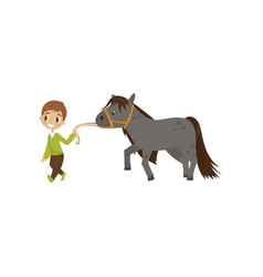 cute litlle boy walking horse equestrian sport vector image