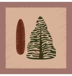 Flat shading style plant Picea vector