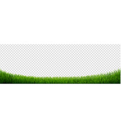 green grass frame isolated vector image