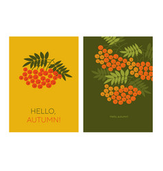 hello autumn with rowanberry vector image