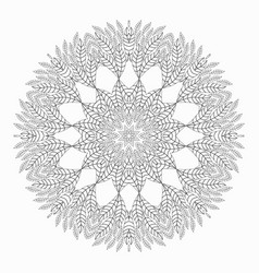 mandala antistress coloring pages for adults vector image