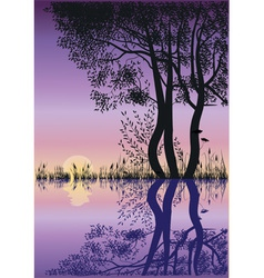 Trees by the lake vector image