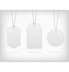 hanging blank steel pricing tags vector image