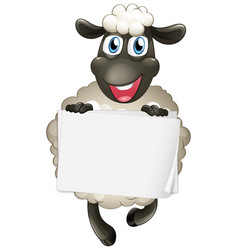 Blank sign template with cute sheep on white vector