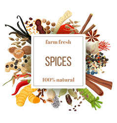 Culinary spices big set under squire emblem vector