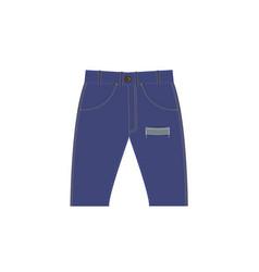 denim shorts vector image