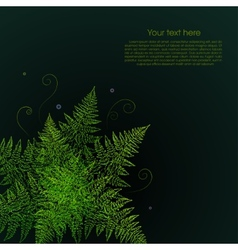 Green fern plant on a black background vector image