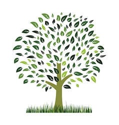 green grass ans tree vector image vector image