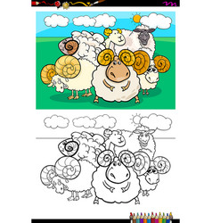 sheep animal characters group color book vector image