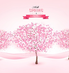 Spring background with cherry blossom trees vector image