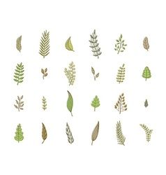 Set of spring leaves soft colors vector image