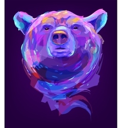 The cute colored bear head vector image vector image