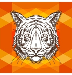 with tiger head Hand drawn vector image