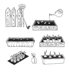 black and white drawing of seedlings of plants in vector image