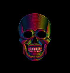 graphic print stylized skull in spectrum colors vector image